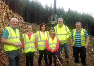 coillte group 1